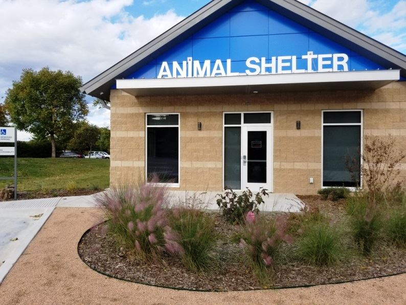 animal shelter front